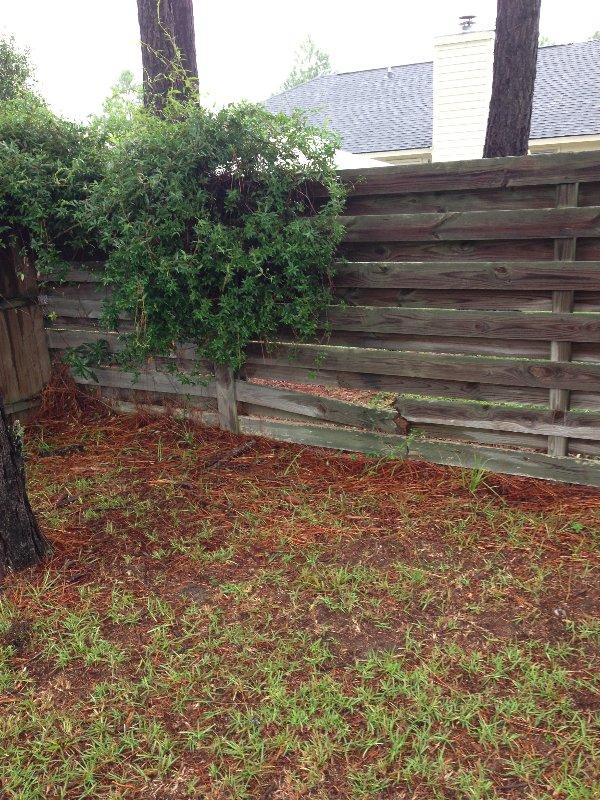 fence-repair-10
