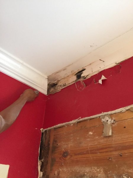 water damage repair savannah