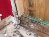 rotten wood framework