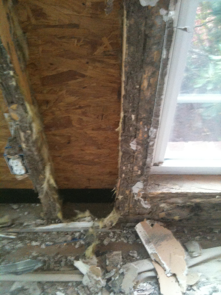 Drywall Removed