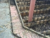 Original Wood Deck 3